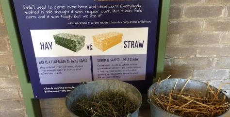 aw-barn-hay-v-straw